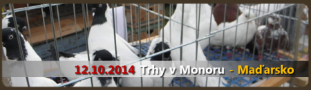 trhy-monor-2014.png